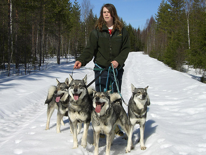 Marthe-med-4-hunder